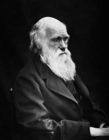 Darwin, Charles (Чарльз Роберт Дарвин)